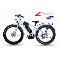 ZIBOS ECYCLE Fat Boy 750