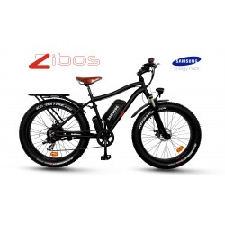ZIBOS ECYCLE Fat Ciao 350